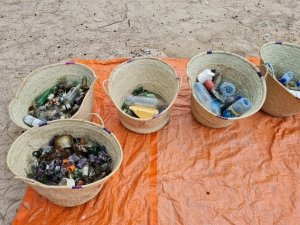 marine litter collected